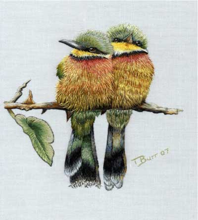 Birds, Thread Painted by Trish Burr, worked in one strand of DMC / Anchor