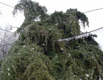 Central Plains Ice Storm, December, 2007