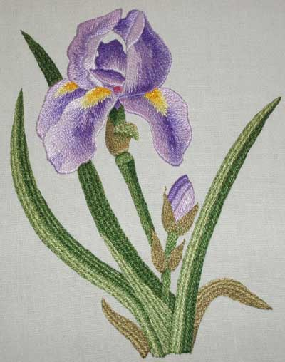 Needlepainting kit from Tanja Berlin: Iris