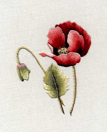 Poppy by Trish Burr