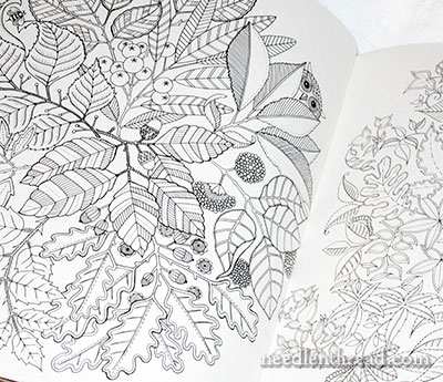 among the hidden coloring pages - photo#30