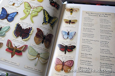 Stumpwork Butterflies & Moths by Jane Nicholas