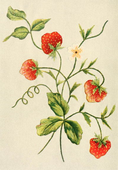 Embroidered Strawberries from Singer Instructions for Art Embroidery