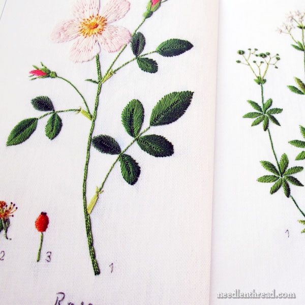 embroidered garden flowers book review - Embroidery Garden