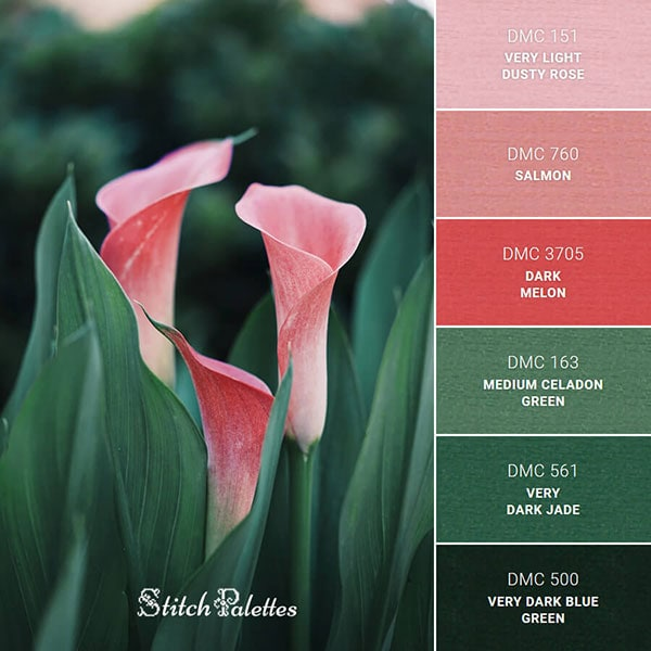 Stitch Palettes website for color and embroidery