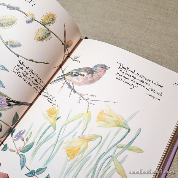 Books for Inspiration for Embroidery
